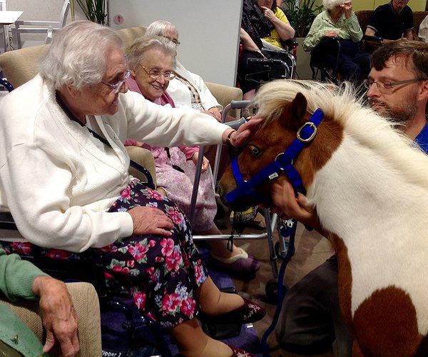 pony-princess-visits-care-home_487.jpg.600x500_q85_box-02c02c22482c1870_crop_detail